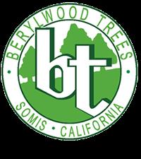 Berylwood Tree Farm Wholesale Nursery For Large Trees In